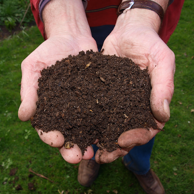 Holistic Living With Rachel Avalon - Sustainability - 3 Easy Ways to Compost