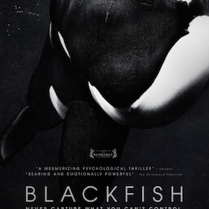 Documentary: Blackfish