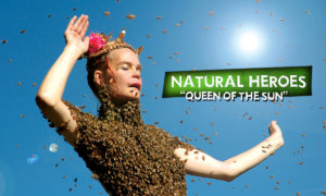 Holistic Living With Rachel Avalon Documentary Natural Heroes Queen Of The Sun