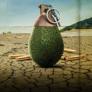 Rotten-Season-2-Documentary-Series-Avocado-Grenade