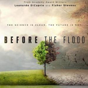 Before the Flood documentary with tree half green and half dead