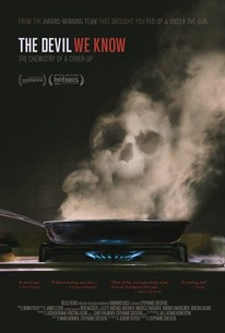 Devil We Know Movie Poster toxic Teflon nonstick cookware with steam forming skull
